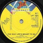 THE WAY LIFES MEANT TO BE UK PRESS 003